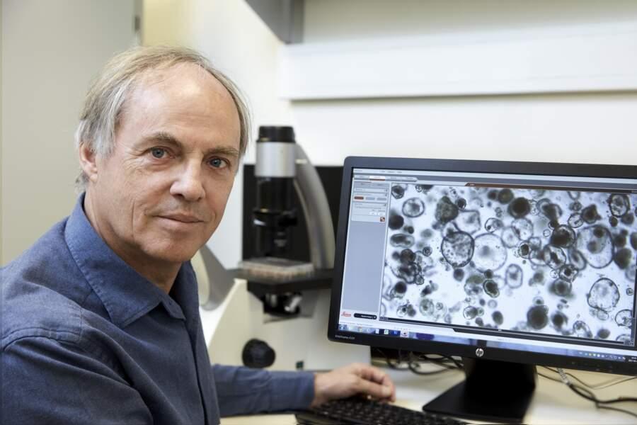 Créer des organes humains artificiels pour tester les médicaments en toute sécurité