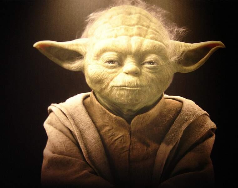 Maître Yoda (4024581-4024721), CEO de l'Ordre du Jedi