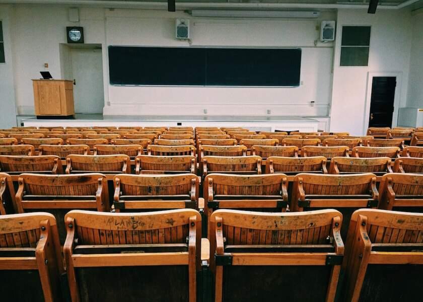 8. Les études post-bac