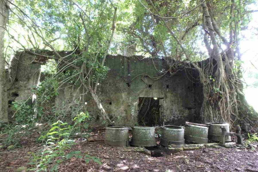Mayotte : Sucrerie Soulou