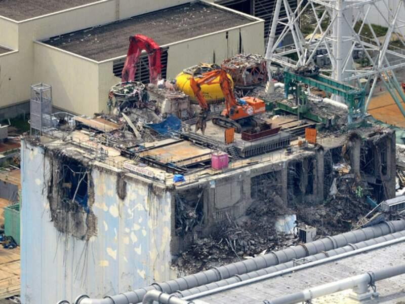 Fukushima, année noire