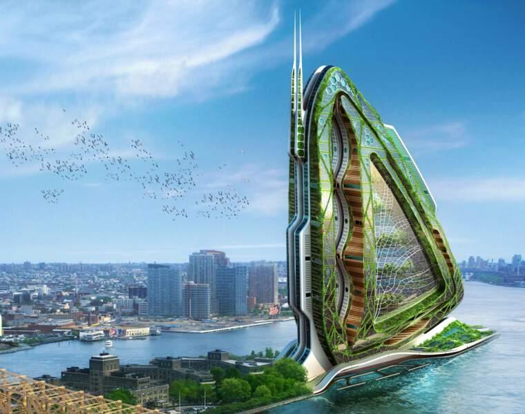 Dragonfly, une ferme verticale urbaine en plein New-York