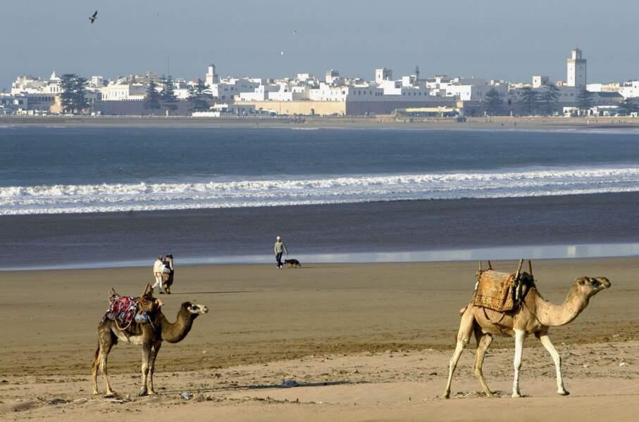 Le Maroc, l'ancien numéro 1 revient sur le devant de la scène