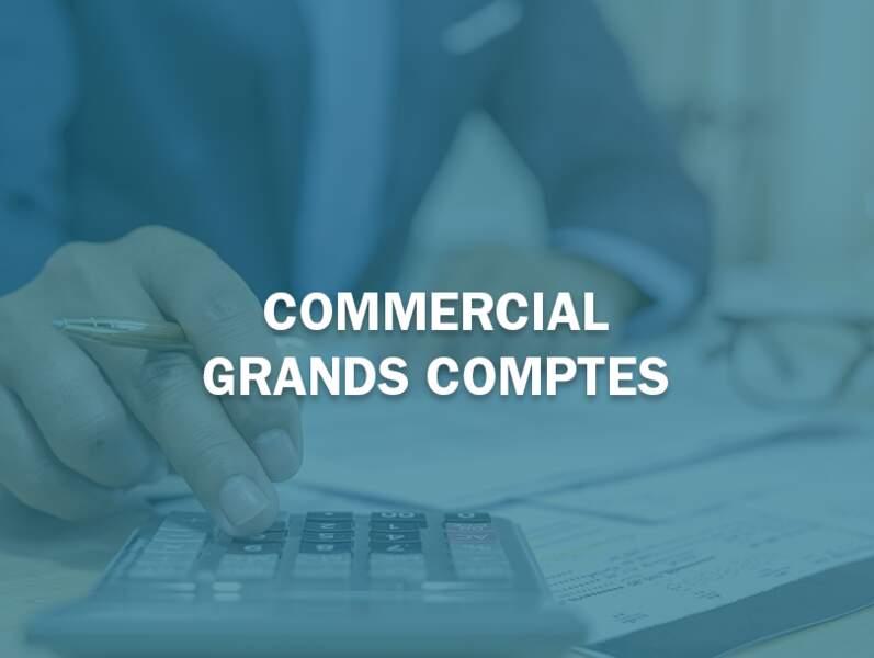 Commercial grands comptes