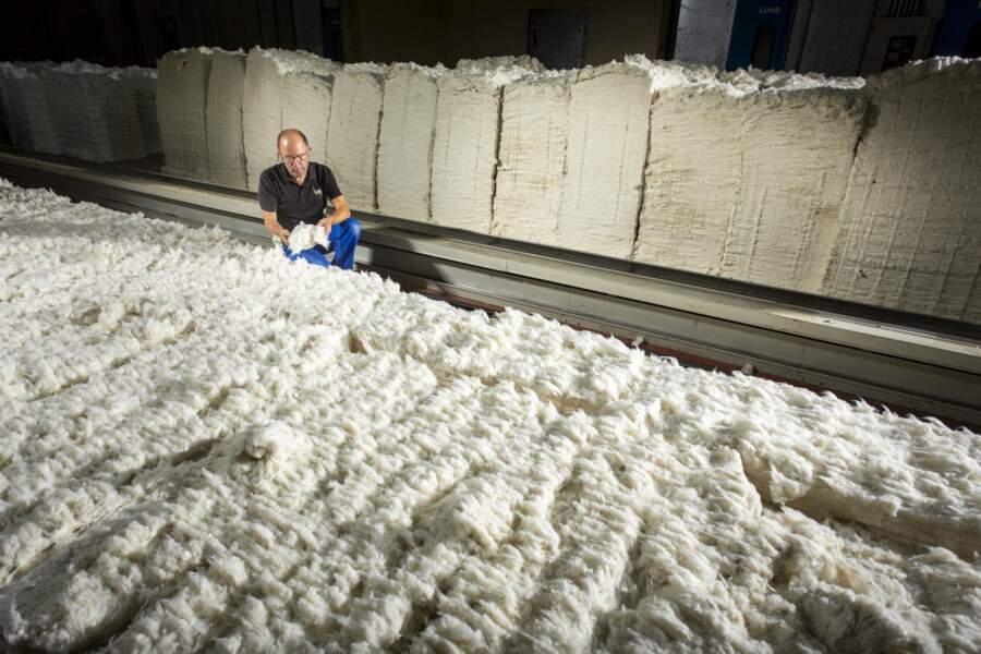 Le coton bio compte pour 15% des approvisionnements