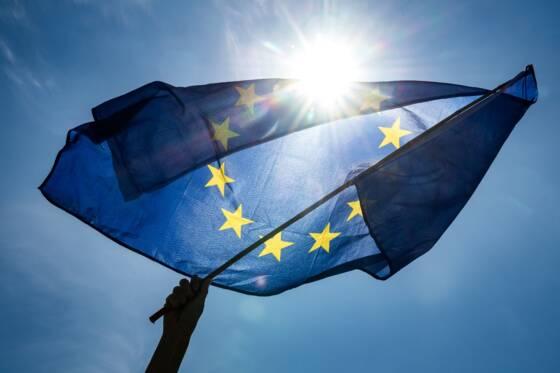 Progression limitée des eurosceptiques, poussée écologiste — Européennes