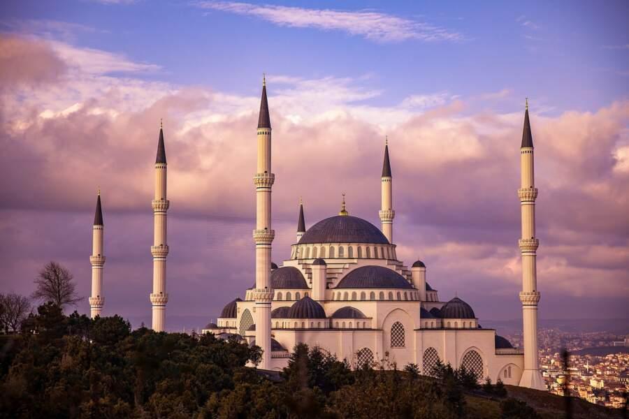 Livre turque