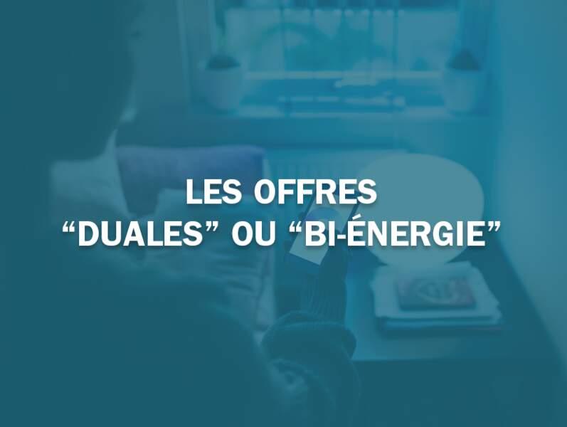 """Les offres """"duales"""" ou """"bi-énergie"""""""